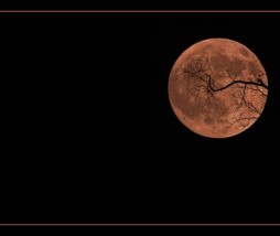 Smoke tinged Halloween Moon, de Peasap en Flickr