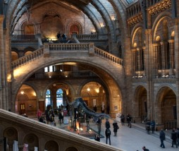 Museo Historia Natural, Londres